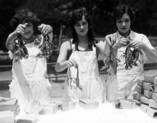 vintageblackandwhitethreesisters_alligators2
